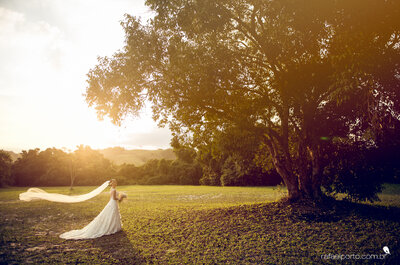 Saiba tudo o que não pode faltar em um casamento ao ar livre!