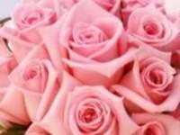 Ramos de novia color rosa