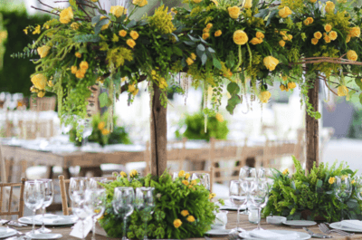 Lienzo charro del pedregal bodas for Jardines bodas df