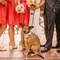 Pupile na ślubie i weselu