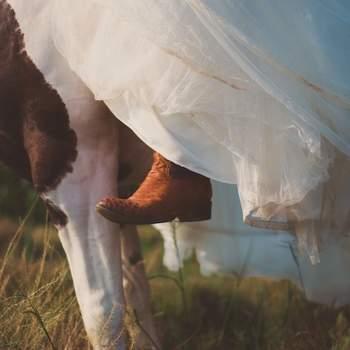 Foto: Marco Samaniego Wedding Photographer