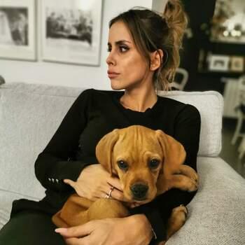 Gonçalo Uva partilhou uma foto da sua Carolina com um cachorrinho. «Valentine», diz apenas na legenda. IG @goncalouva