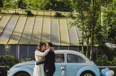 Bajeczny ślub miłośników kotów w Oranżerni! Piękny!