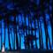 Preciosa imagen de los novios en la que se ha jugado con el impresionante azul del cielo. Foto. U&U photo. Web: http://www.u-uphoto.com/