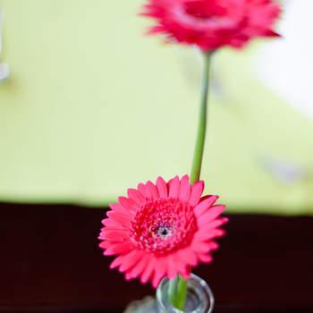 Manchmal ist weniger mehr: vereinzelte Blumen für die Tischdeko. Foto: 2Rings Trouwfotografie (Holland)