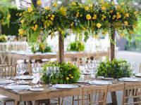 Los 7 mejores jardines para boda en Ciudad de México