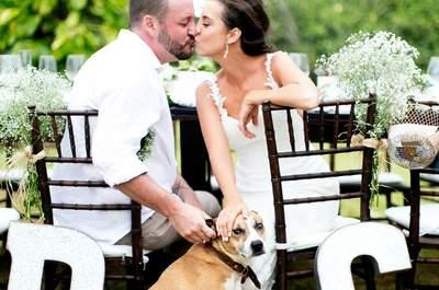 Gisele & Daryl: Mini-wedding com os pés na areia ULTRA emocionante!