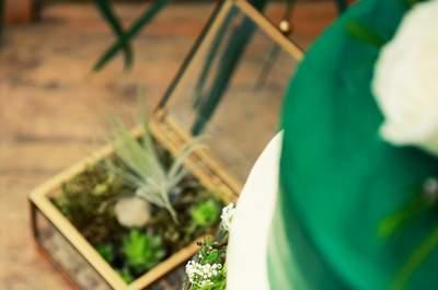 Sesja ślubna w szklarni, czyli powiew botkaniki, boho i natury. Zapraszamy!