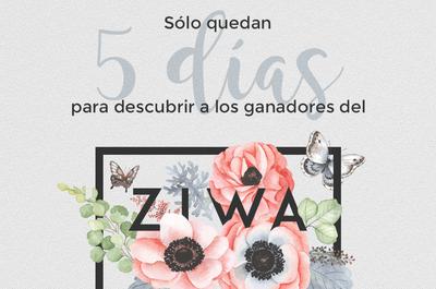 Sólo quedan 5 días para que finalice ZIWA 2016, ¿ya votaste?