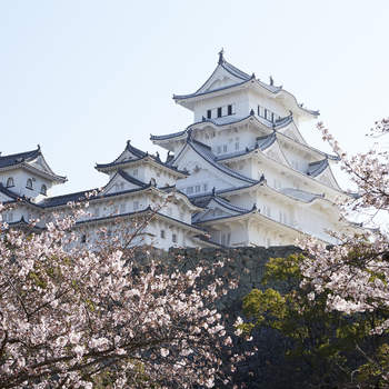 Honeymoon in Japan: Discover all the Nuances That Make Up This Wonderful Country