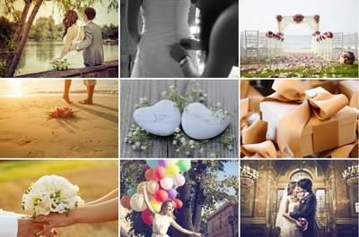 Physalis: L'assurance d'un service exclusif et personnalisé pour votre mariage!