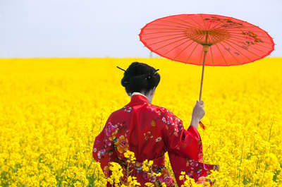 Vive en Japón la luna de miel a medida con la que siempre soñaste, gracias a Viajes Kinsai