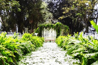 Decoradores de bodas en Bogotá: ¡Los 9 mejores para este día tan especial!