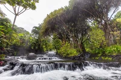 Disfruta de una lujosa luna de miel en el paraíso de Costa Rica