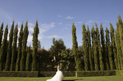 ¿Quieres ser la novia del año 2016? ¡Requisitos y bases legales!