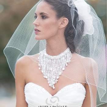 Angela Pascale Spose