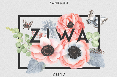 Here we have the winners of ZIWA 2017!