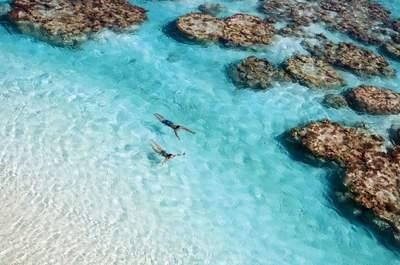 Printemps Voyages : une lune de miel idyllique au cœur de la Polynésie