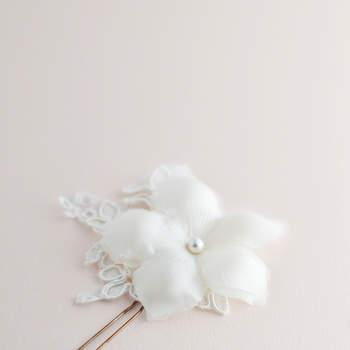 Foto: Orchidee De Soie