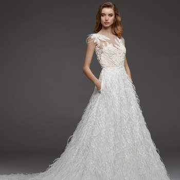Carey, Pronovias
