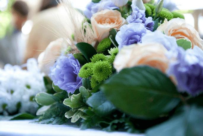 Zioclick - Pranovi Wedding