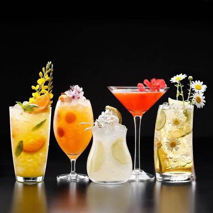 Cócteles y Vinos Open Bar