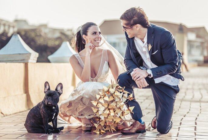 Pros y contras de tener un perro al principio de la convivencia