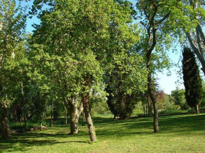 Le Domaine de Puyfond