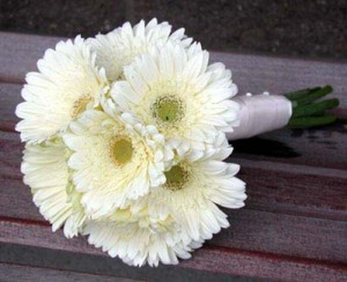 Elegante ramo de margaritas blancas.