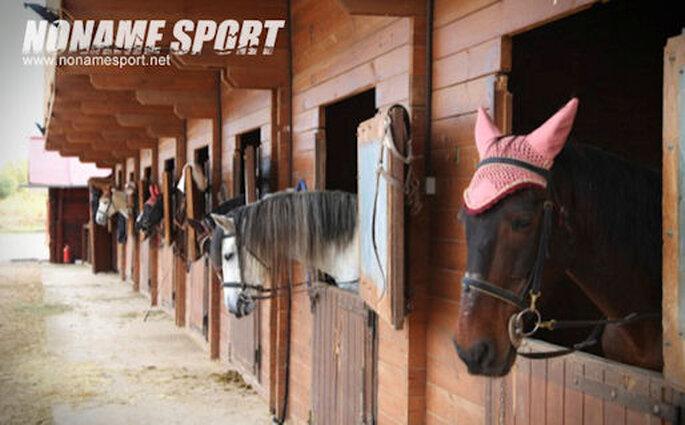 NoName Sportt