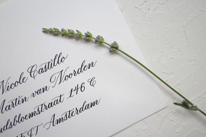 Foto: Letter and Vine