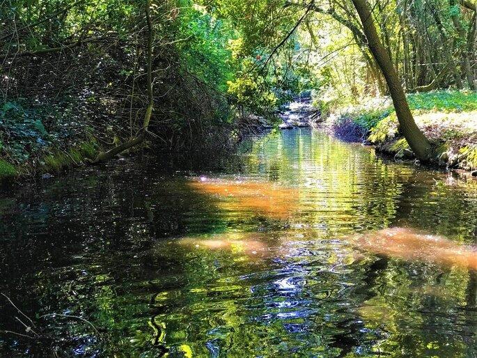 Un écrin de nature, une rivière qui donne un caractère bucolique et champêtre à un mariage