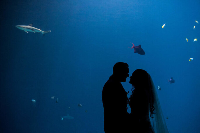 Foto: Weddingspics