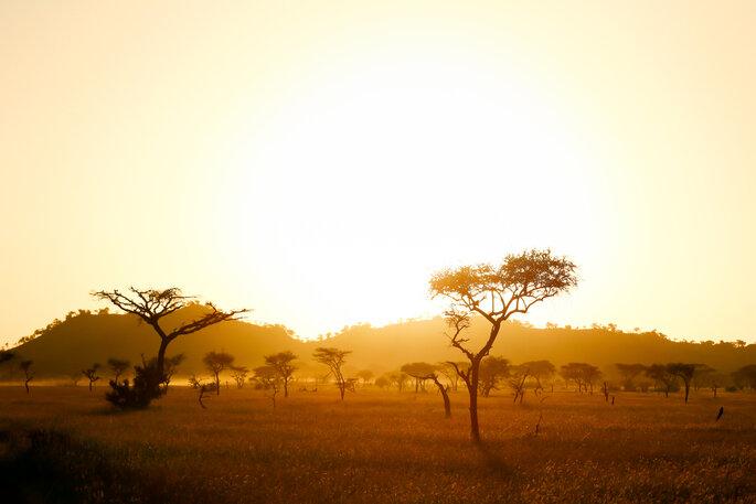 Tanzania - Foto: Andrzej Kubik / Shutterstock