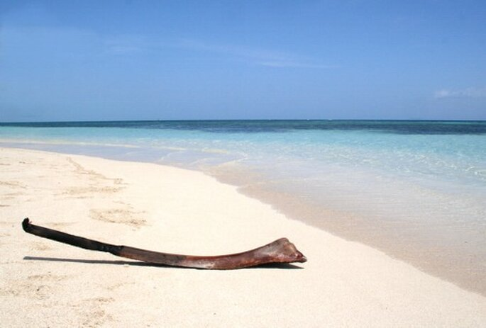 S'unir sur une plage de rêve en Guadeloupe : féerie assurée ! - Photo : Voyage de Noces