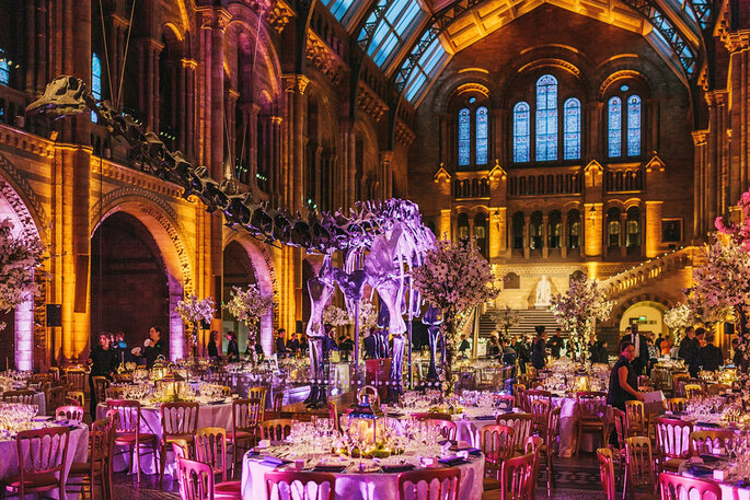 Natural History Museum Wedding Reception