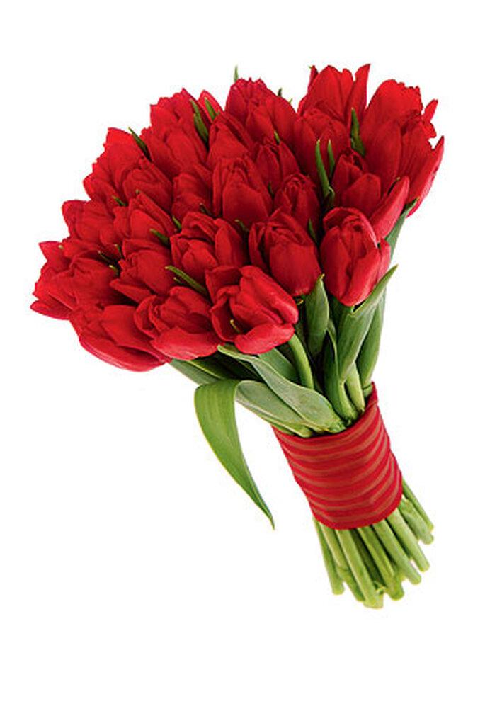 Ramo de novia de tulipanes rojos