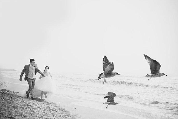 Miguel Matos Fotografia