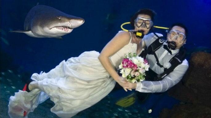 Cambia tus invitados por peces y tiburones celebrando tu matrimonio bajo el agua