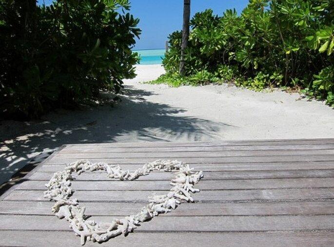 Seychellen – Foto: everystockphoto.com/flickr, rp72