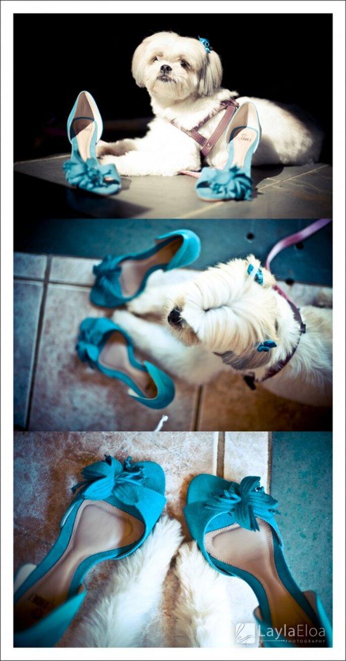 Los más lindos detalles de boda en color azul - Foto: Layla Eloa