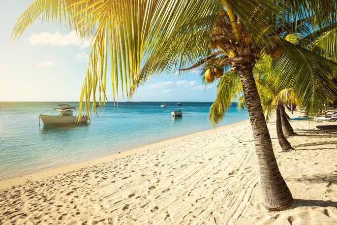 Foto vía Shutterstock: ohrim