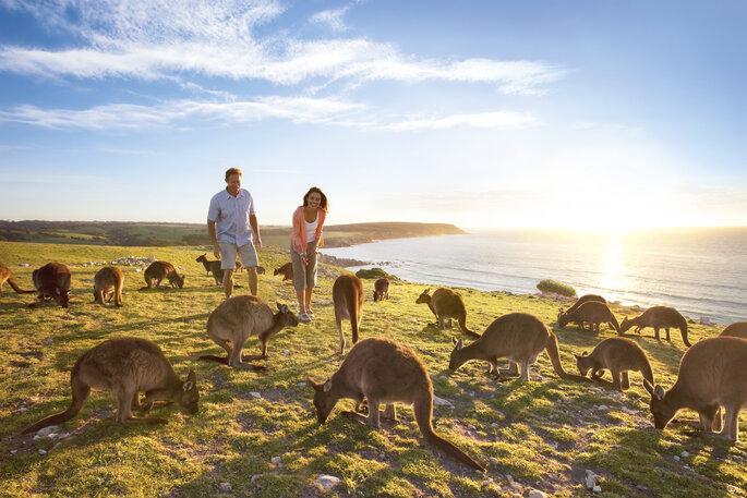 Photo : Australie à la Carte