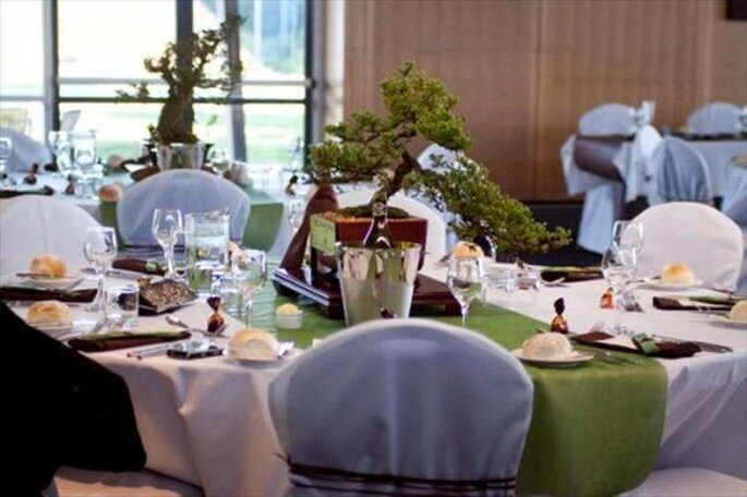 Centro de mesa de boda con bonsai. Vía The Knot foto de Something Blue Photography