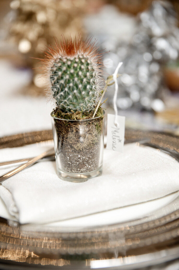 Una boda exótica decorada con cactus - Tory Williams Photography