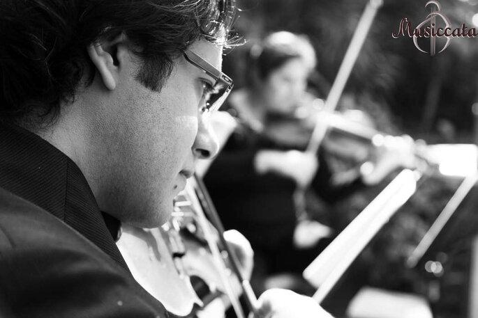 Violino para música da cerimônia