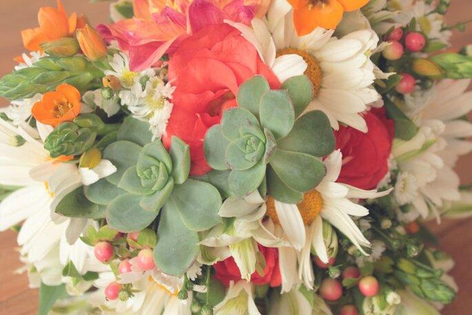 Magnolia Flores