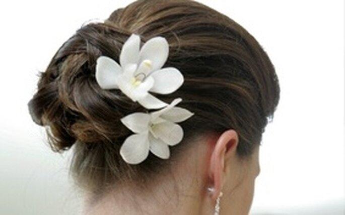 Para este 2010 puedes elegir entre una gran de opciones para tu peinado
