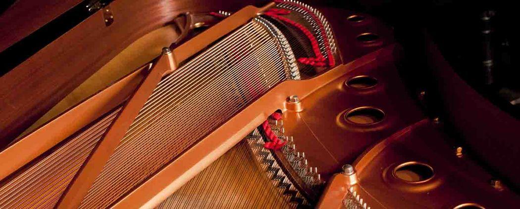Kbranca Music