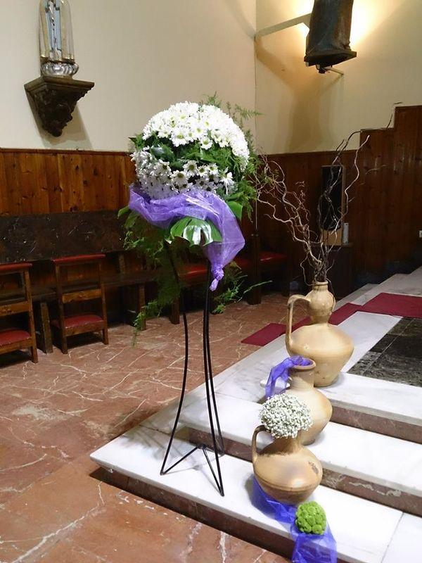 Floristería Dracena